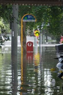 Flooding in Rosalie