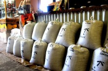 Bags of roasted coffee ready for dispatch. Picture by: Jane Mahoney