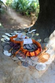 Visitors to the 'Kanak Trail' leave offerings in the hollow of a stump in a similar fashion to a wishing well
