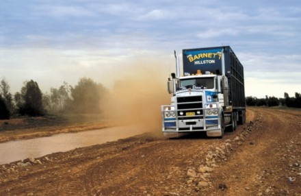 CSIRO's TRANSIT tool has modelled the movements of the approximately 20 million cattle transported in Australia every year.