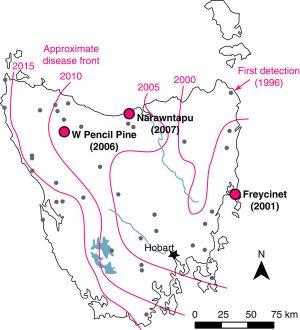 Map of the spread of the Tasmanian Devil Facial Tumor 1996-2015