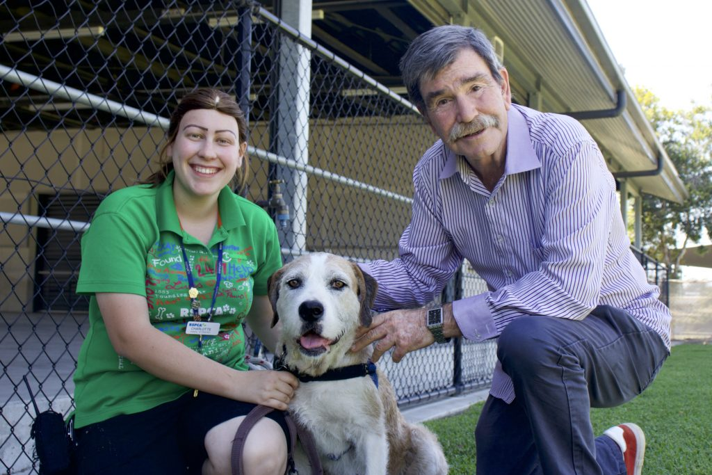 RSPCA Queensland animal attendant Charlotte Kennedy and spokesman Michael Beatty with 'Kitty' at the RSPCA Brisbane campus in Wacol.